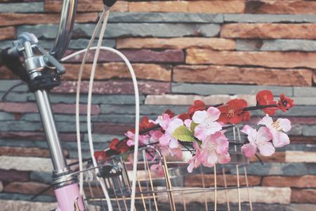 handlebar: Vintage bicycle handlebar with sakura flowers Stock Photo