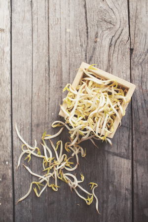 mung bean sprout: Bean sprouts