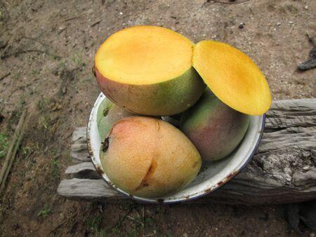 ripe: Ripe mango. Stock Photo