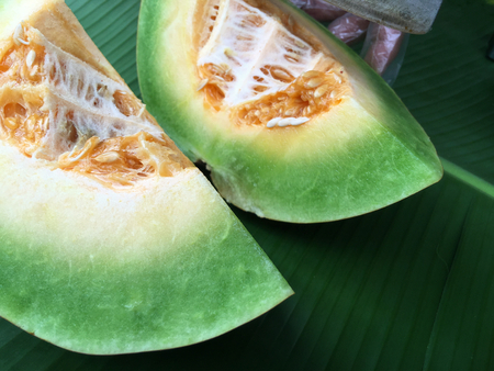 cantaloupe: Cantaloupe