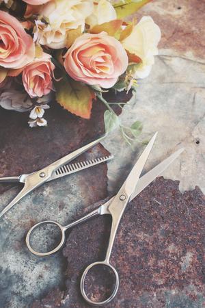 shears: Hair cutting shears