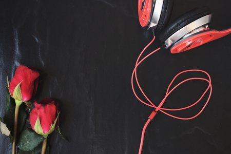 earphone: Red rose with earphone Stock Photo