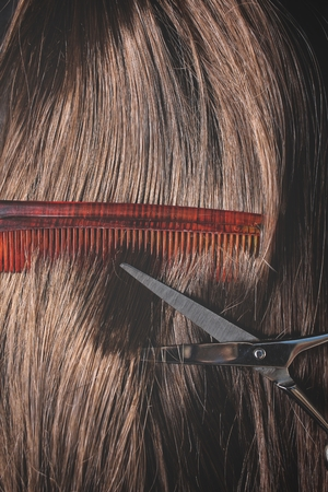 comb hair: Hair cutting shears and comb