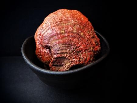 Ganoderma Lucidum - ling zhi mushroom on black background