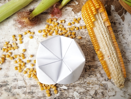 Paper fortune teller with dried corns