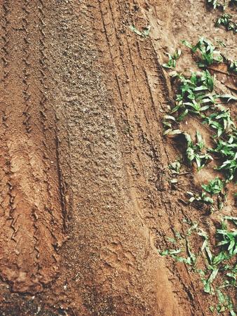Wheel tracks on the soil Stock Photo - 85086588