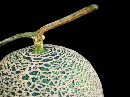 Cantaloupe melon Japanese fruit on black background
