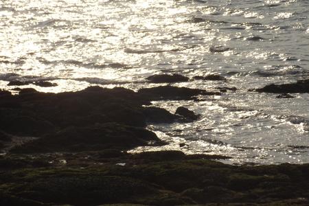 seaway: Evening