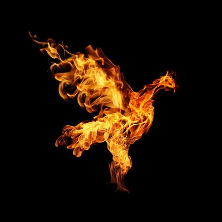bird wing: burning fiery bird flies on a black background