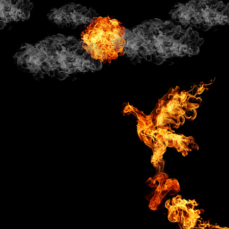 abstract fire: burning fiery bird flies on a black background