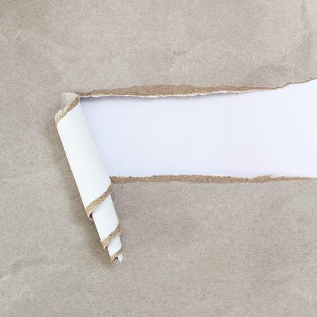 curl: curl paper