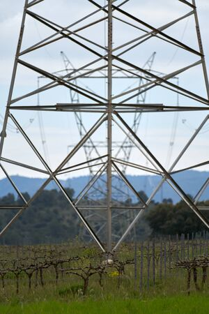 large high voltage towers surrounded by fields with green wheat plantations and natural forest with a cloudless sky