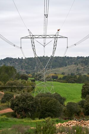 large high voltage towers surrounded by fields with green wheat plantations and natural forest with a cloudless sky Stock Photo