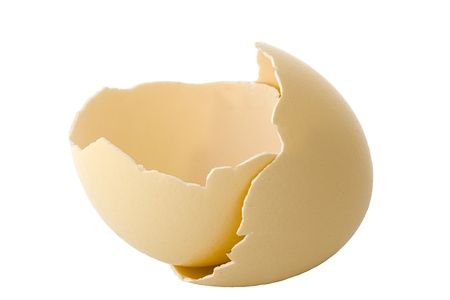 Shell of ostrich's egg Stock Photo - 10866633