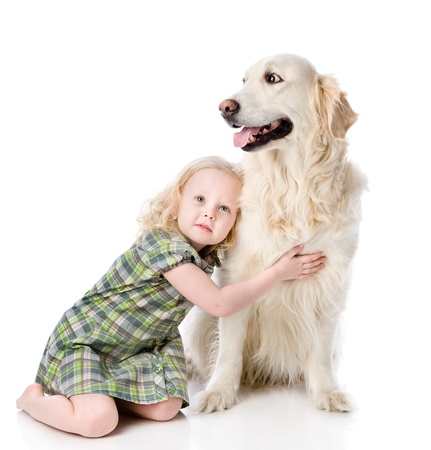 large group of animals: girl embraces a Golden Retriever  looking away  isolated on white background