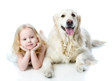 grappige honden: meisje en Golden Retriever kijken naar camera geïsoleerd op witte achtergrond Stockfoto
