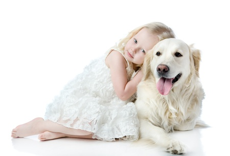 girl embraces a Golden Retriever  looking at camera  isolated on white background