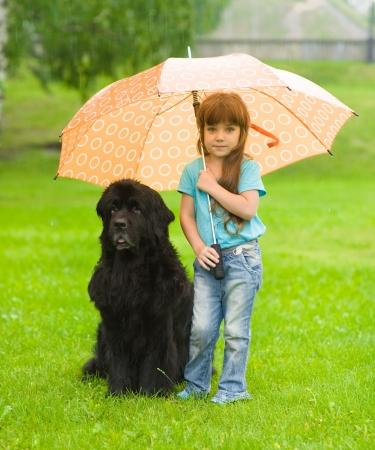 Newfoundland: the girl with the dog under an umbrella