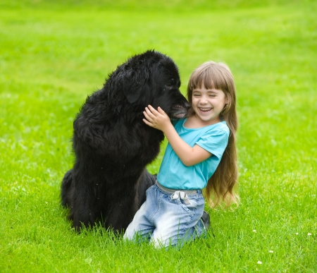Newfoundland dog kisses a girl photo