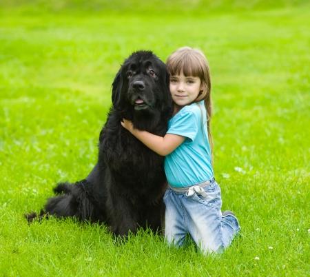 Ένας ήρεμος σκύλος...