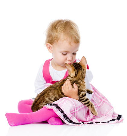 girl playing with cat  isolated on white background Stock Photo - 22504531