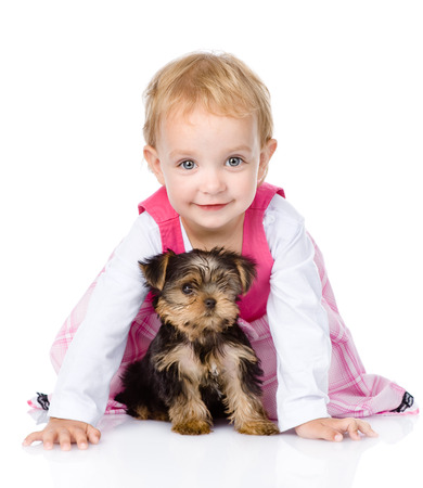 little girl playing and crawling with a puppy  isolated on white background photo