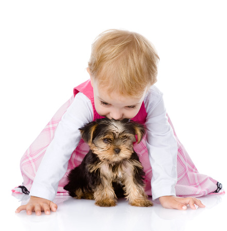 animal related: little girl playing and crawling with a puppy  isolated on white background