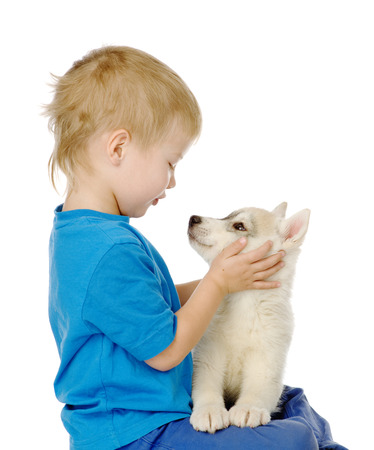 animal related: little boy and   1085;uskies puppy  isolated on white background Stock Photo