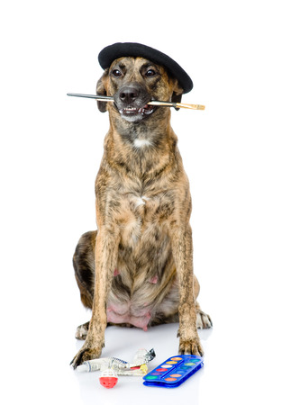 dog as a painter with a brush  isolated on white background photo