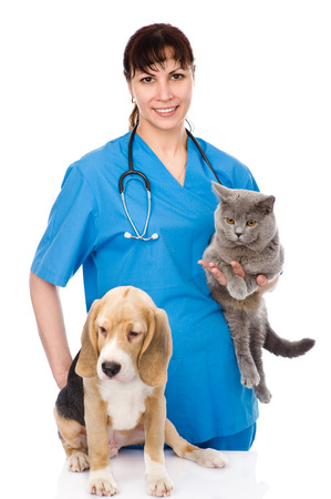 veterinarian with cat and dog  isolated on white background Stock Photo - 25469878