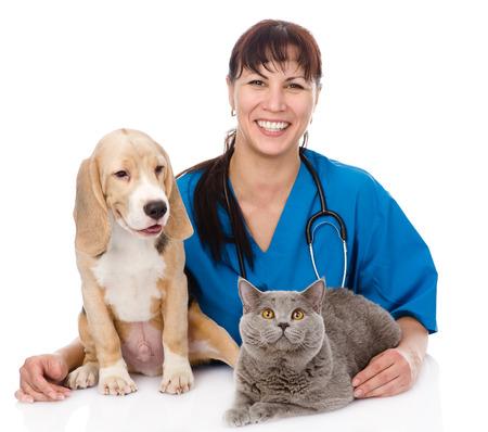 笑って獣医ハグ猫と白い背景で隔離の犬 写真素材