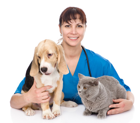 veterinarian hugging cat and dog  isolated on white background photo