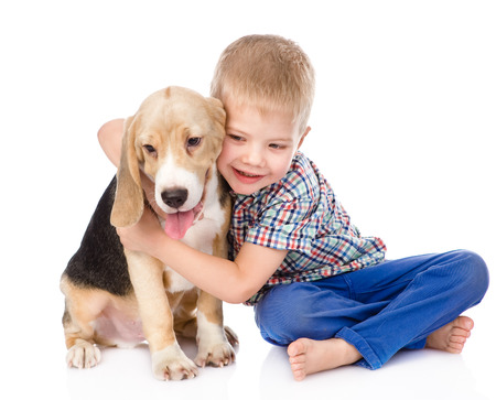 little boy hugging beagle puppy  isolated on white background photo