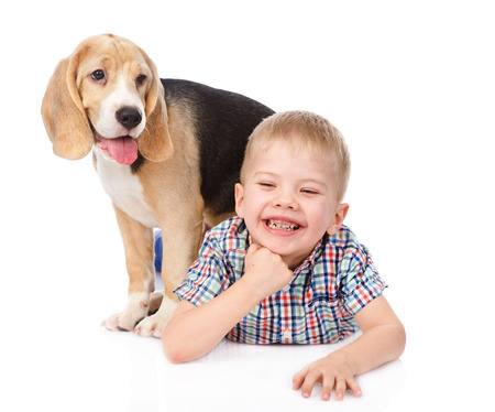 boy has fun with a puppy  isolated on white background photo