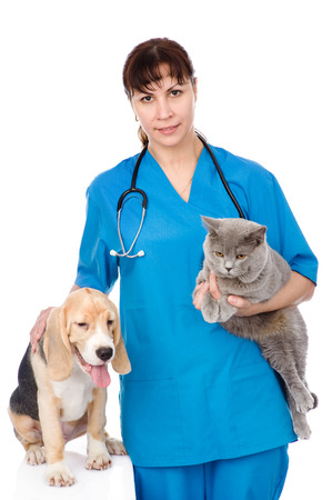 vet with cat and dog  isolated on white background photo