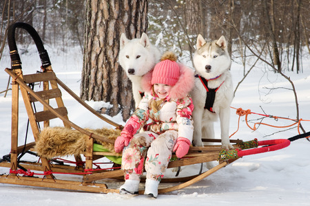 little girl with husky dogs in winter park photo