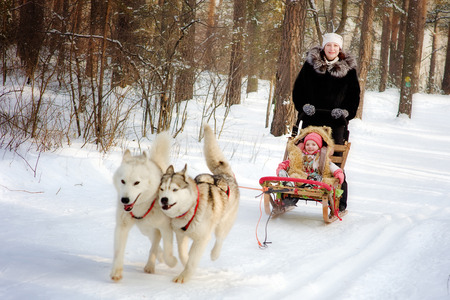woman and little girl on a sleigh ride  with siberian husky