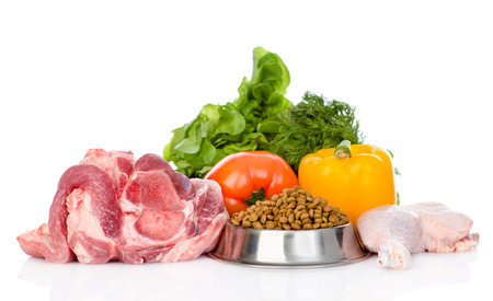 nutrici�n: Los alimentos org�nicos y seco para mascotas. aislado en fondo blanco Foto de archivo