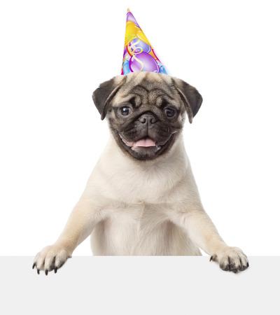 Pug puppy met verjaardag hoed gluren van achter een leeg bord. geïsoleerd op witte achtergrond Stockfoto