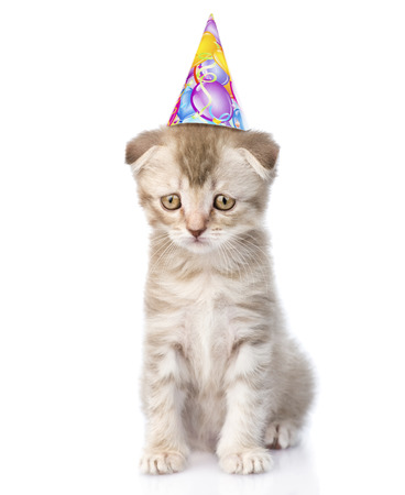 lop eared: Sad cat with birthday hat. isolated on white background Stock Photo