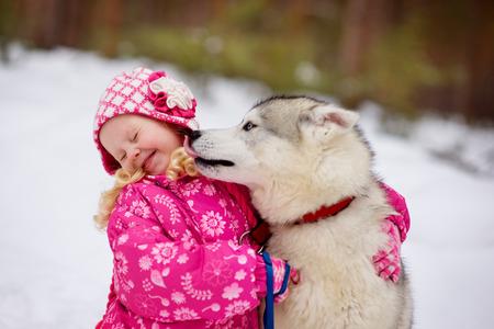 小さな女の子を舐めている hasky 犬 写真素材