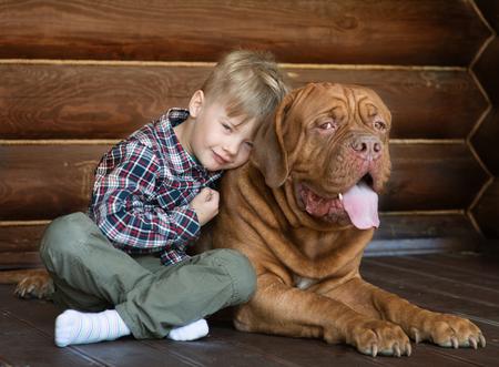 bordeaux dog: Little boy embracing big Bordeaux dog