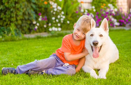 kid and White Swiss Shepherd dog together on green grass. Standard-Bild