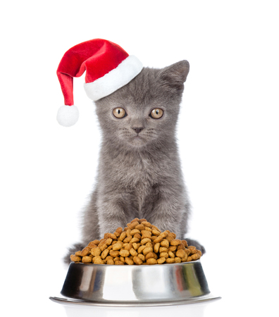 kitten: Kitten in red santa hat with bowl of dry cat food. isolated on white background.