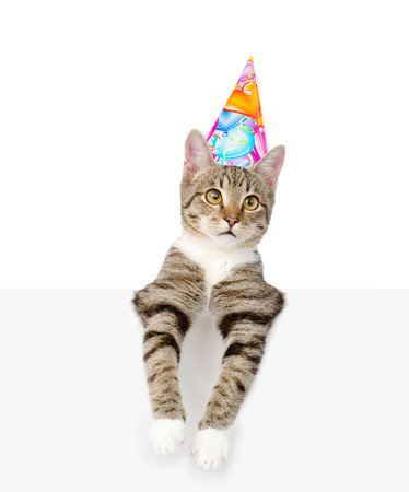 party hat: Kitten in birthday hat looking out because of the poster. isolated on white background.