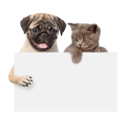 carlin: Cat and Dog above white banner. isolated on white background.