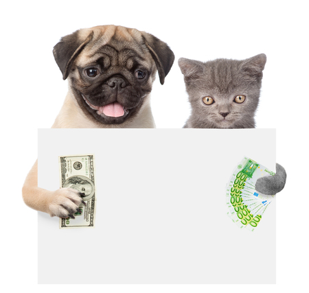 Cat and Dog peeking from behind empty board holding money. isolated on white background.