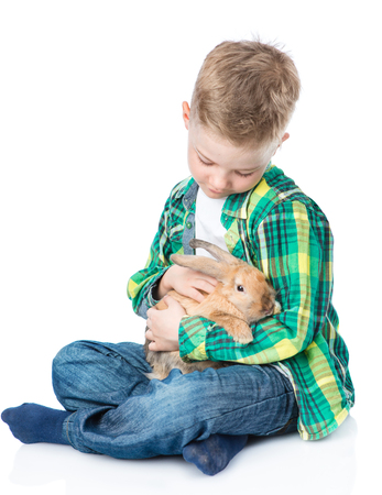 petting: Boy petting a rabbit. Isolated on white background. Stock Photo