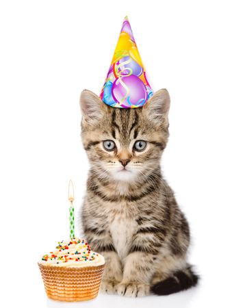Kat in verjaardag hoed en cake kijken naar de camera. geïsoleerd op een witte achtergrond.