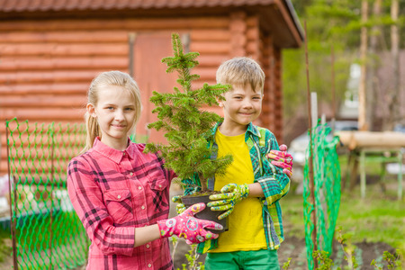 seedling: brother and sister hold a seedling tree in hands.